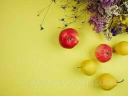 Желтый двусторонний, матовый фон для предметного фото. ..